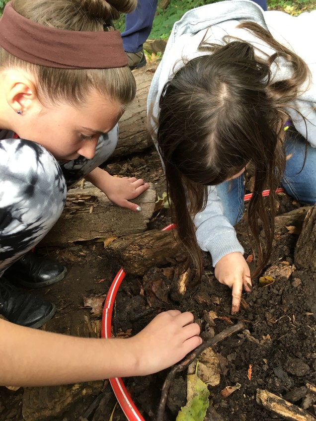 Digging for decomposes